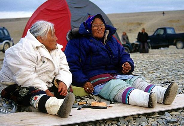 Inuit elders eating Maktaaq, a whale blubber delicacy.