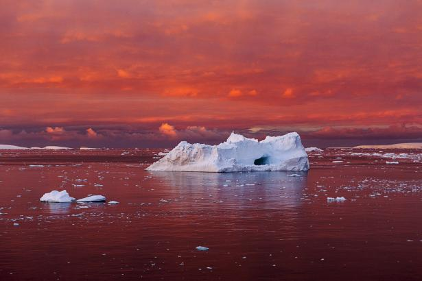 Iceberg in Blood Red Sea, Antarctica