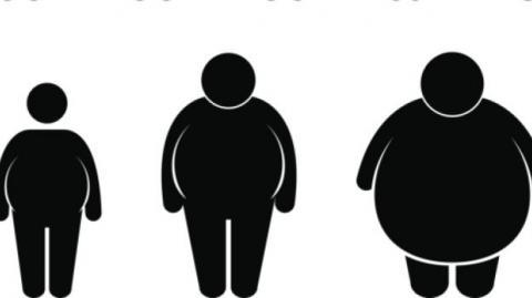What Can Obesity Control Learn From Tobacco Control's