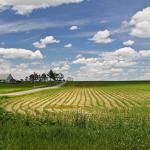 Progressives Should Care About Agriculture feature image