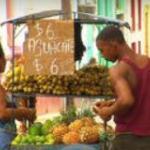 Cuban Economic Reforms feature image