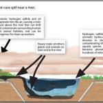 KXL Pipeline feature image