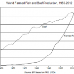 Farmed Fish Production Overtakes Beef  feature image