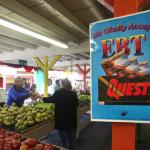 The Sword Drops on Food Stamps feature image