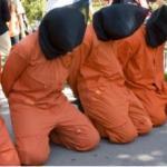 My Guantanamo Solidarity Hunger Strike feature image