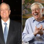 Stop the Koch Brothers From Buying the Trib feature image