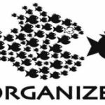 The Organizing Model-As American as Apple Pie feature image