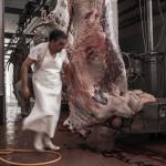 Meat and Poultry Work is Brutal feature image