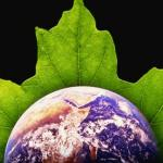 A Second Ecological Revolution? feature image