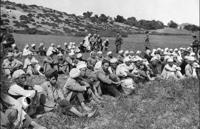 Algerians arrested in 1956 during the war of independence from France.