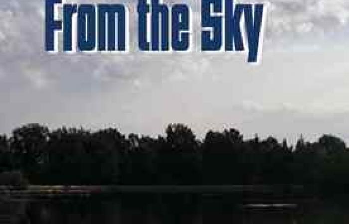front cover of the novel The Man Who Fell From the Sky