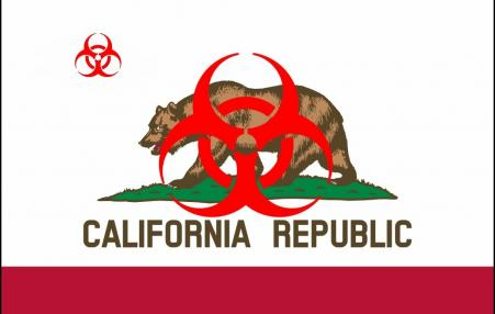 graphic of CA bear with toxic sign